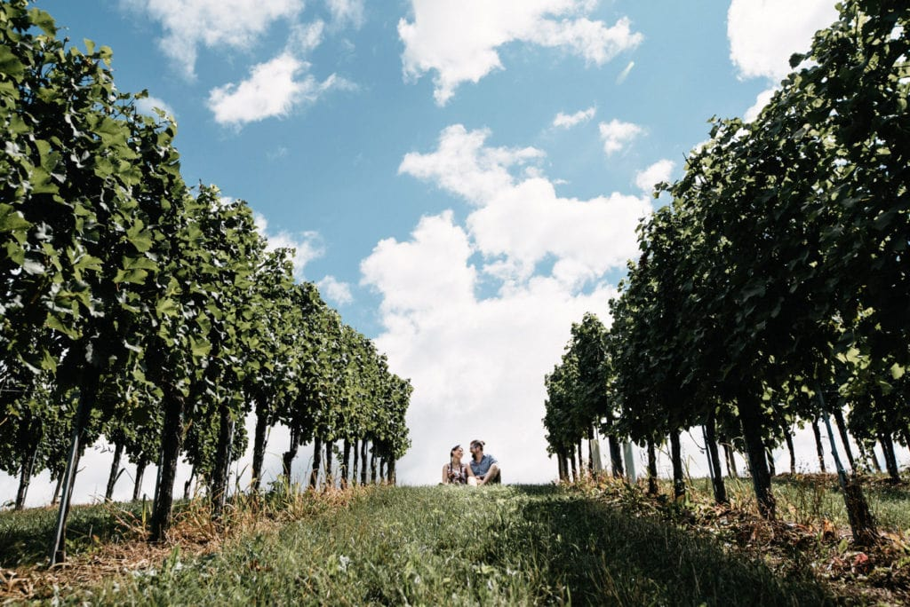 Sitting in the vineyards in southern styria in a symmetrical picture composition of Bianca and Tom