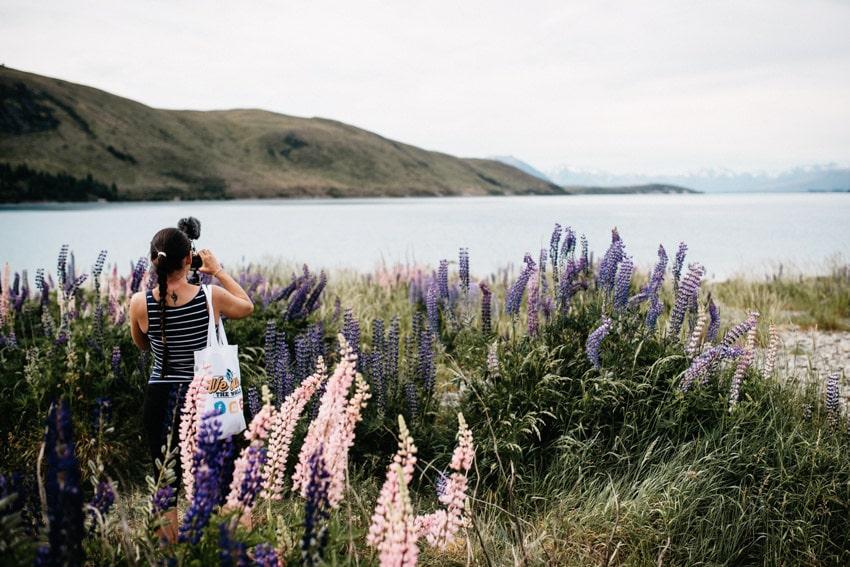 Filming Lake Tekapo Lupines