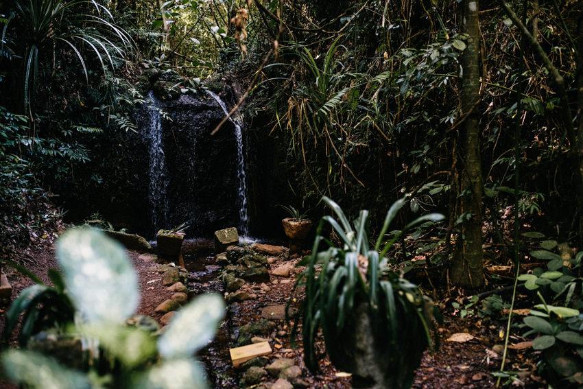 Paronella Park Teresa Falls