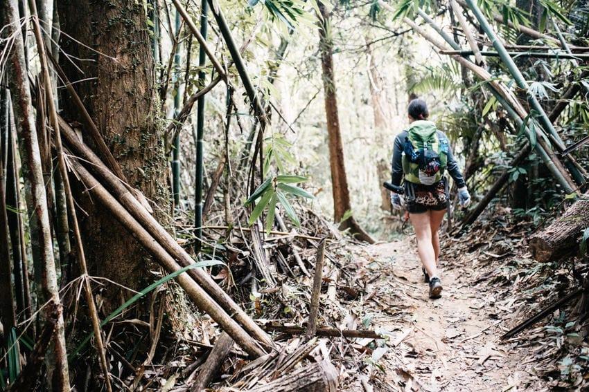 Gibbon Experience Nam Kan National Park 2