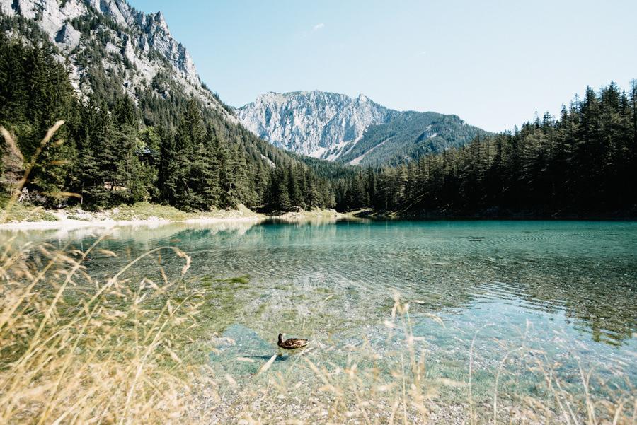 Austria Upper Styria Alps Green Lake-002