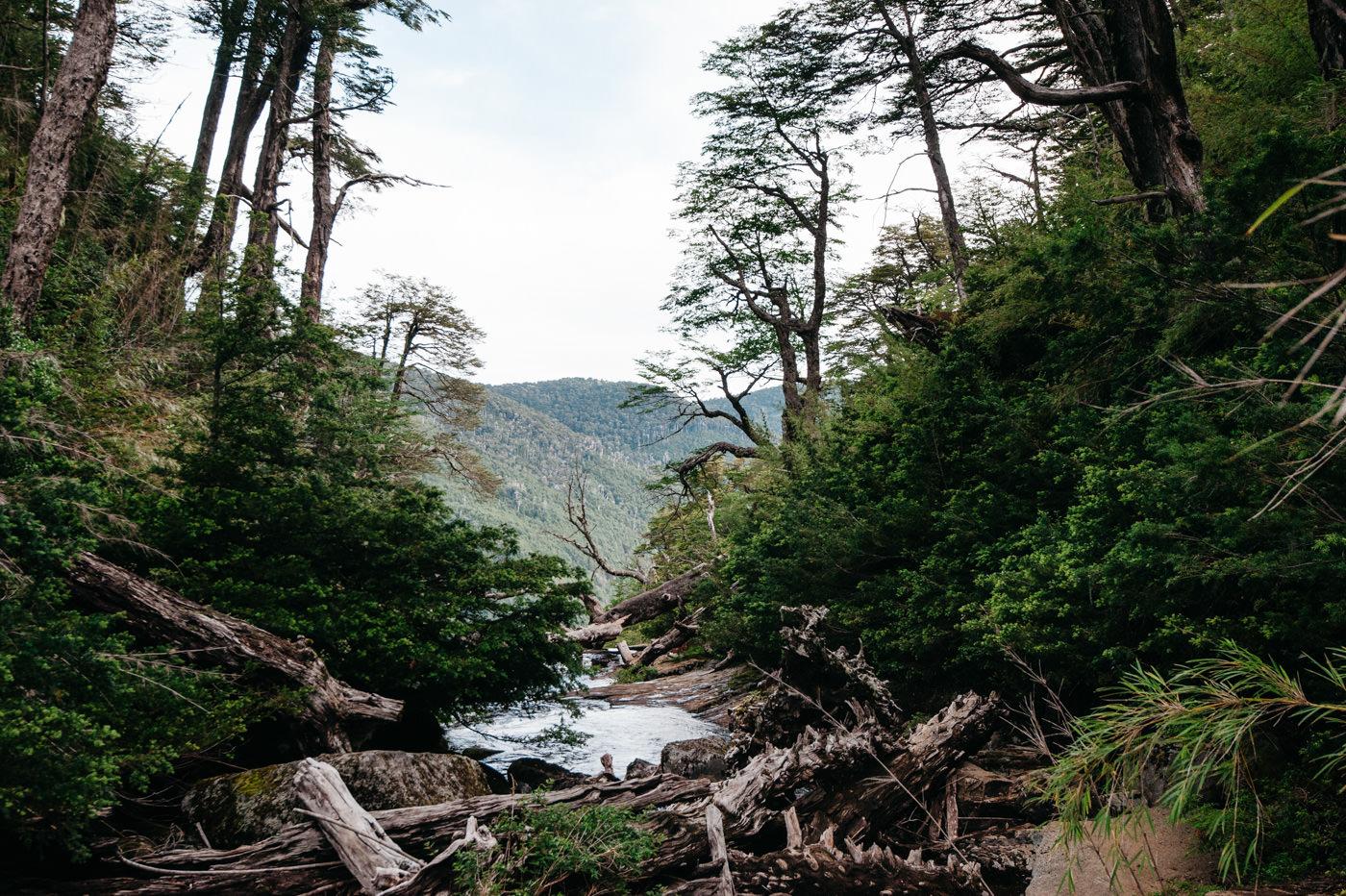 Chile Parque Nacional Huerquehue Sendero Los Lagos Waterfall Lago Chico