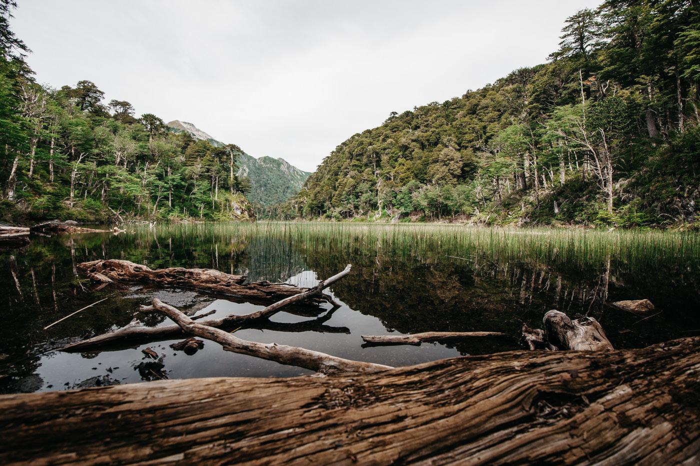 Chile Parque Nacional Huerquehue Sendero Los Lagos Lago El Toro