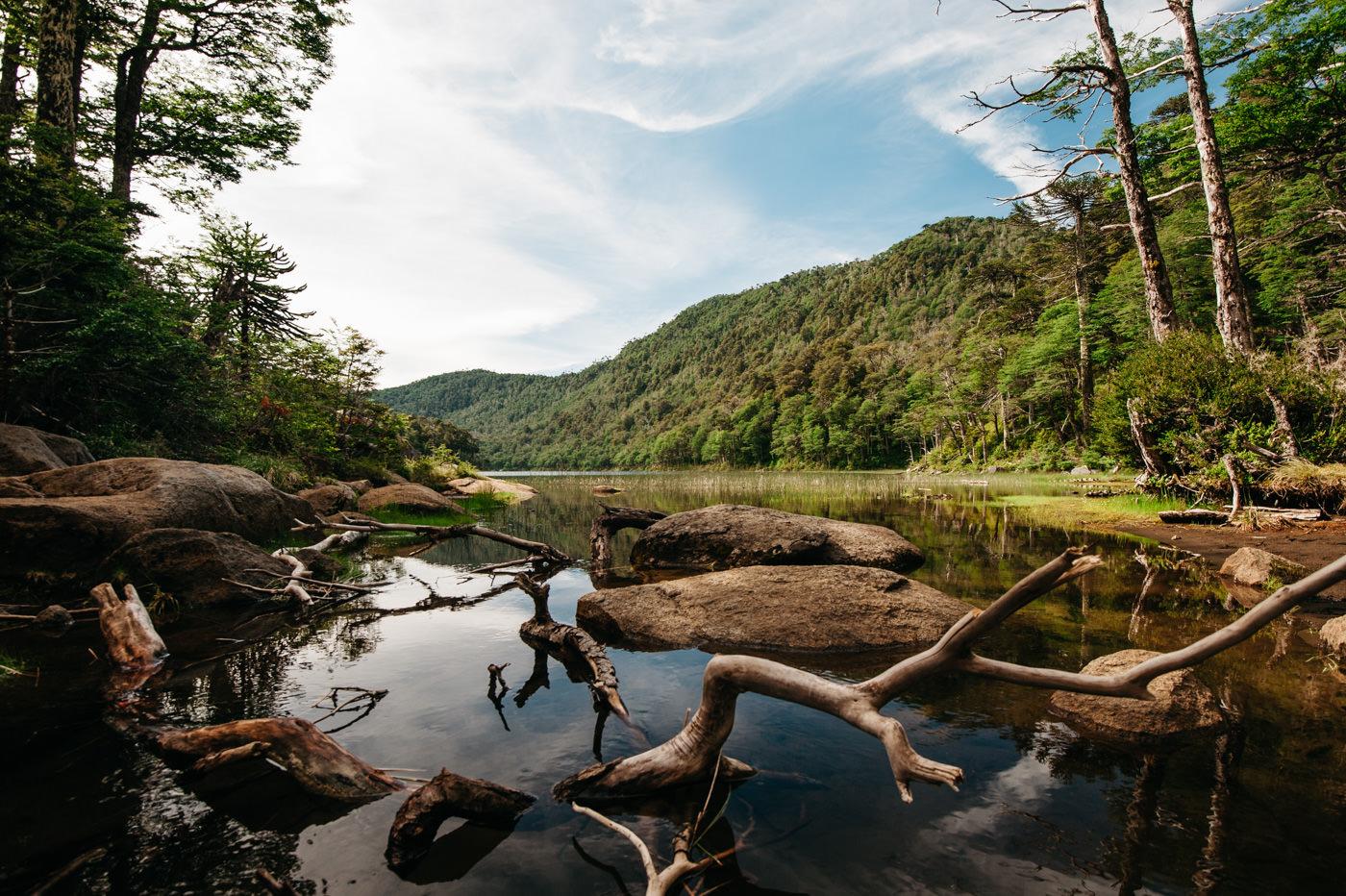 Chile Parque Nacional Huerquehue Sendero Los Lagos Laguna Verde