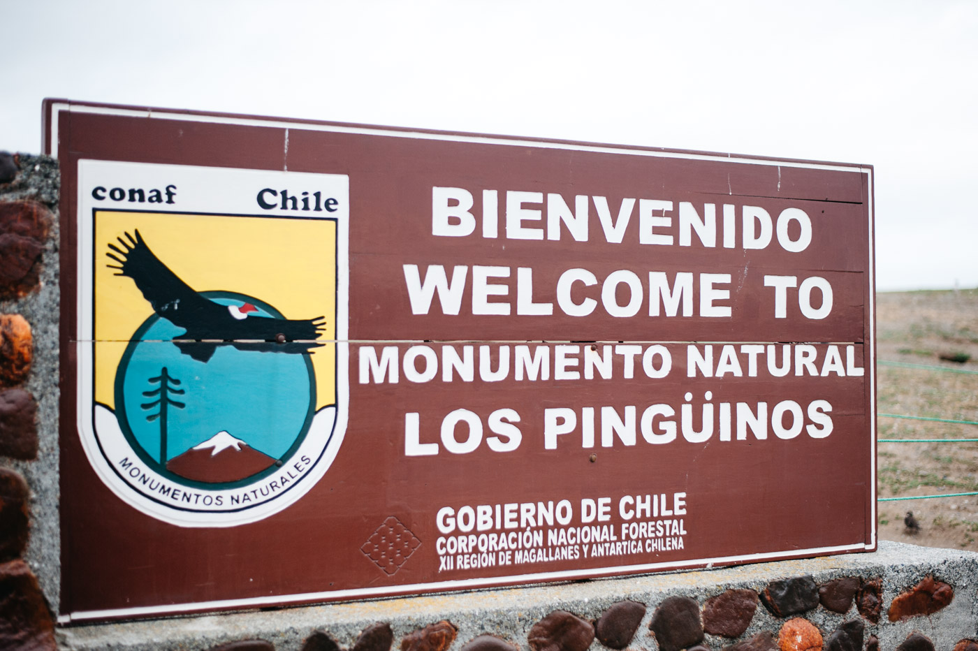 Welcome to Monumento Natural Los Pinguinos on Isla Magdalena