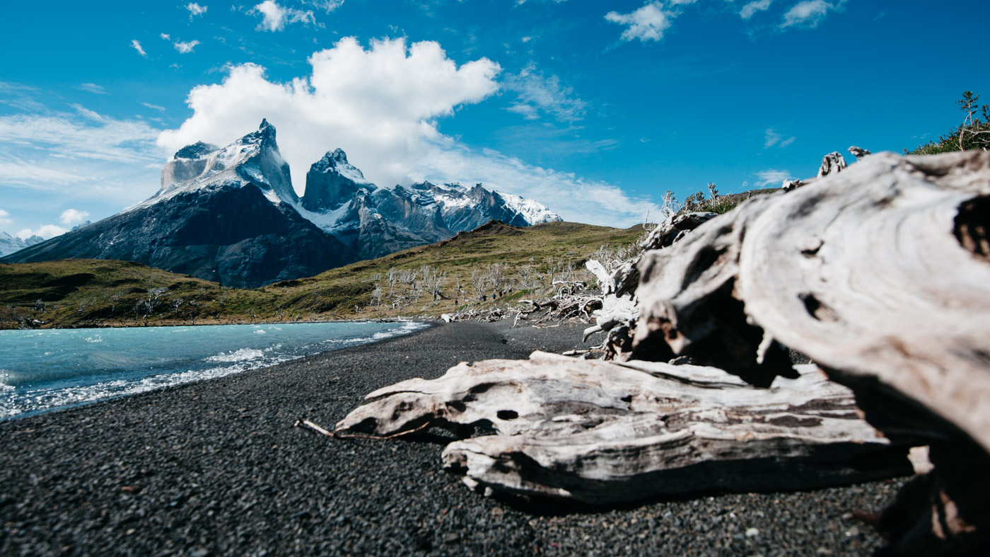 Torres del Paine with some old weathered wood in the foreground