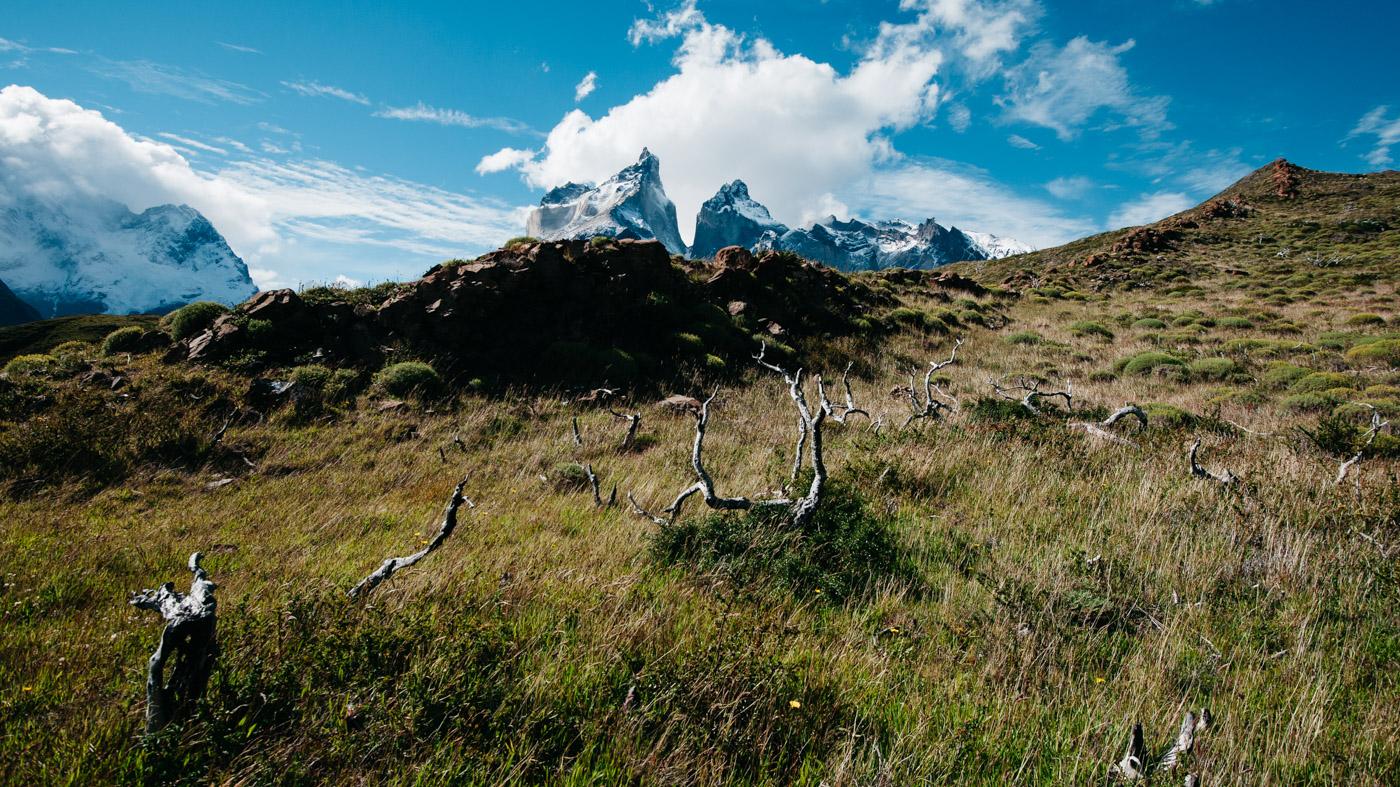 Torres del Paine Sender Mirador Cuernos